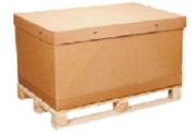 Carton box in Daman