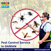 Pest Control Services in Daman